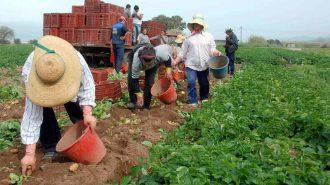 Σύσκεψη Αν. Υπουργού Οικονομίας Ανάπτυξης Αλέξη Χαρίτση με αγρότες